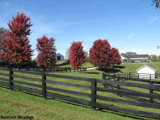 9 Fencing Types Yard Fencing Options Fence Styles