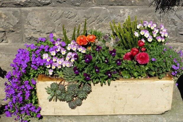 Container Gardening Small Patio Ideas Home Garden