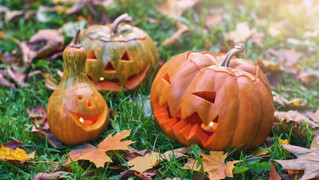 8 Halloween Decoration Ideas For Your Yard