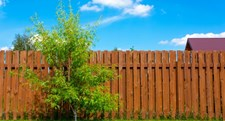 Frequently Asked Questions About Wood Fencing