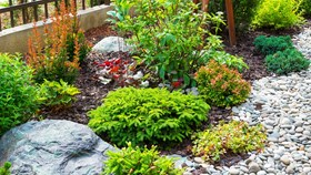 2020 Landscaping Trends