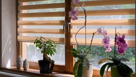What Is The Difference Between Blinds, Shades & Shutters?