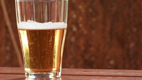 A Beginner's Guide to Home Brewing