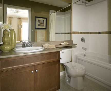 Bathroom mildew removal how to get rid of bathroom mold - Basement bathroom cost calculator ...