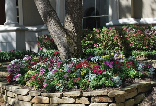 Home Landscaping Guide Gardening Ideas