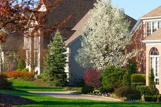Reasons Why You Should Add Backyard Trees Landscaping Ideas Curb Appeal