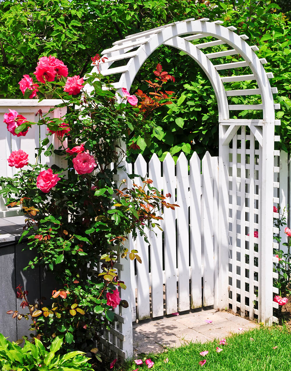 Change The Look Of Your Yard With An Arbor Or Pergola Backyard Ideas
