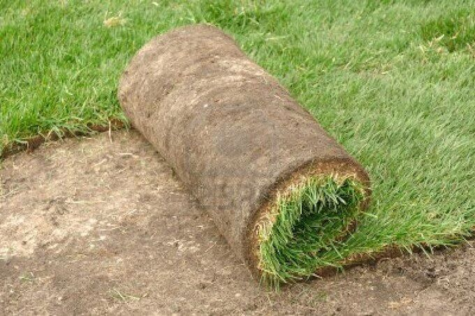 2019 St Augustine Sod Prices   St Augustine Pallet Of Sod Cost
