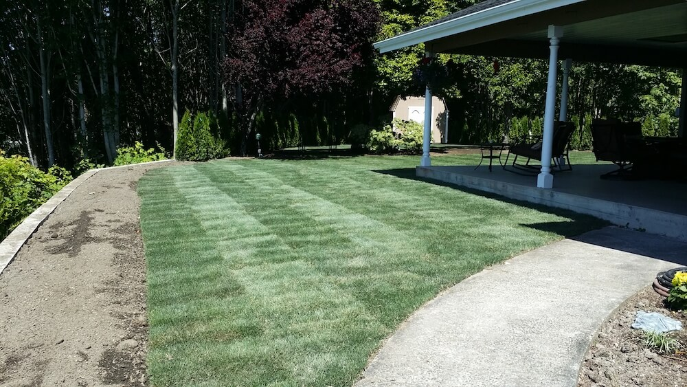 2020 Bermuda Sod Prices How Much Is A Pallet Of Sod