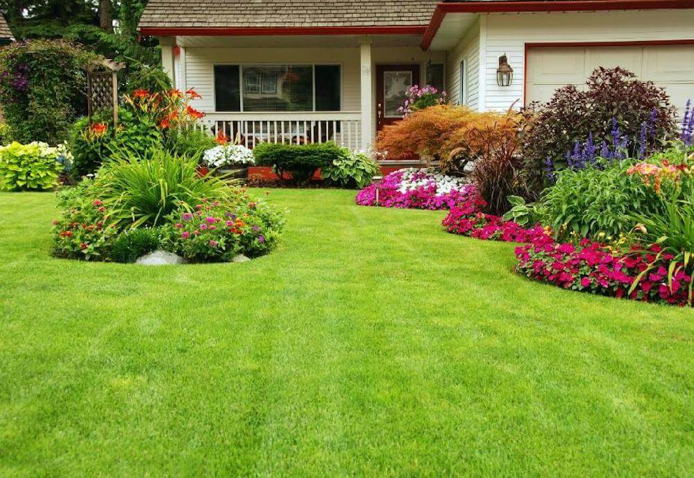 Cost Of Lawn Mowing