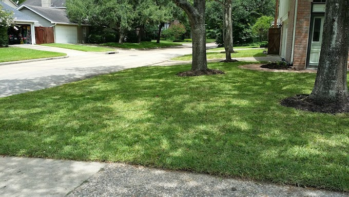 Resodding 2019 Lawn 2019 CostsPrice CostsPrice Factors 2019 Lawn Factors Resodding 7f6gvmIYby