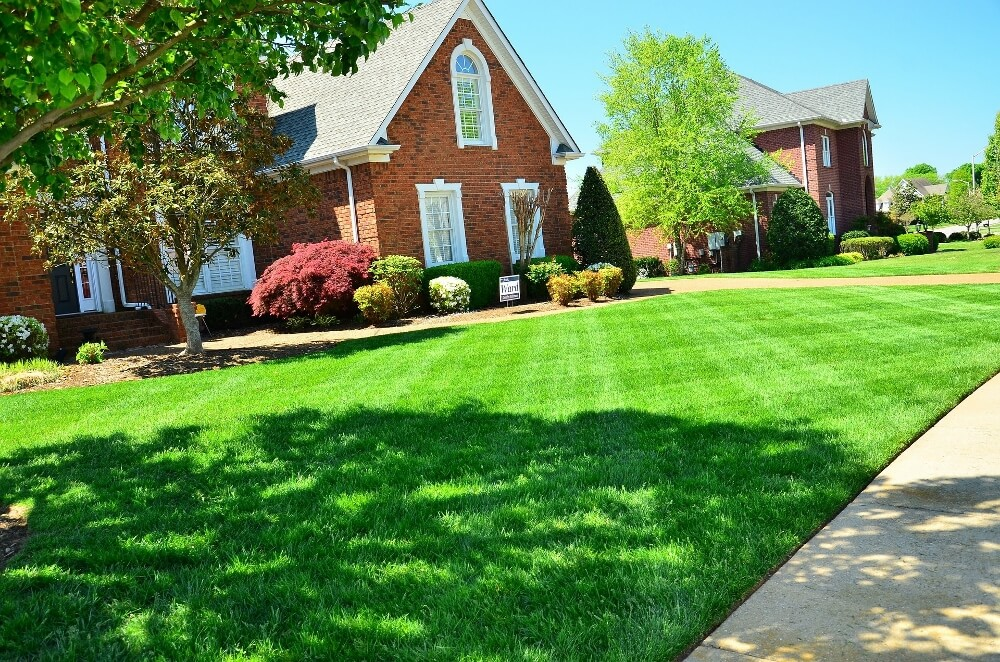 Landscaping Tips For New Homeowners | New Homeowner Tips