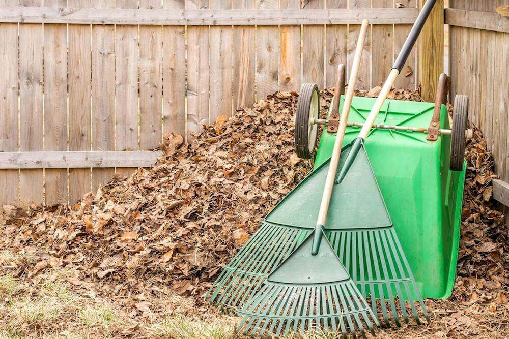Leaf Clean Up Cost