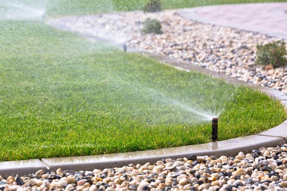 Water Your Lawn