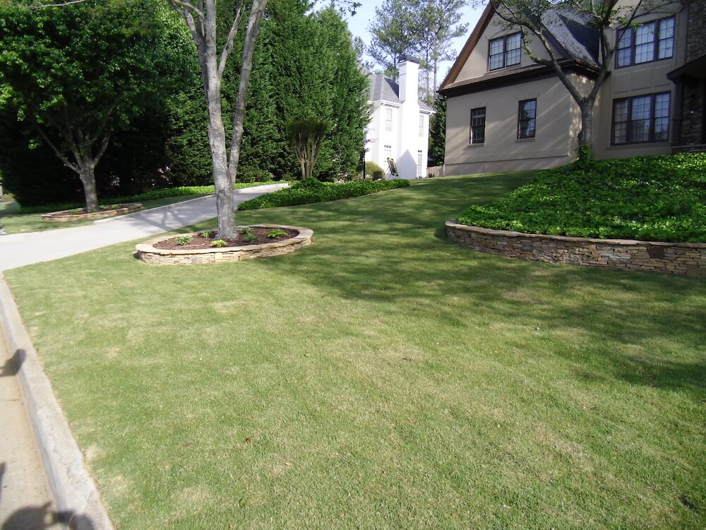 Zoysia Sod Cost Comparison