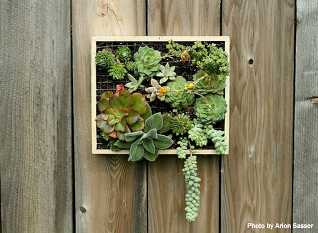 Beau Grow Your Plants With Vertical Gardening. Small Patio Gardening
