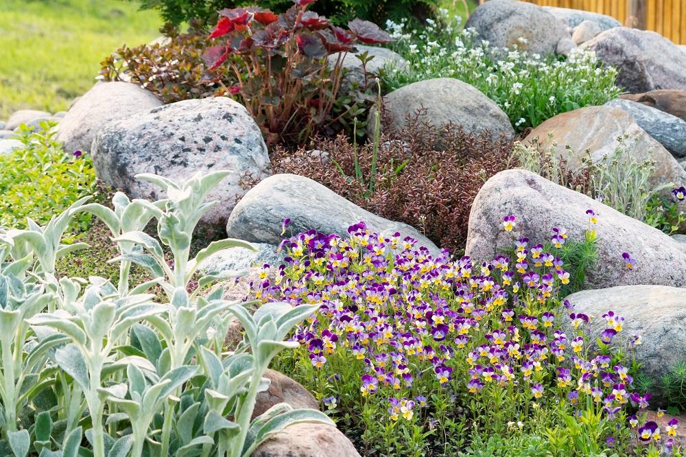Landscaping Rocks For Your Yard Garden, Rocks In A Garden